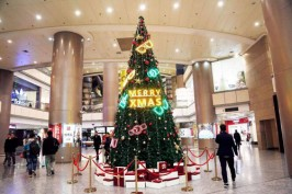 天然圣诞树比塑料圣诞树更环保么?